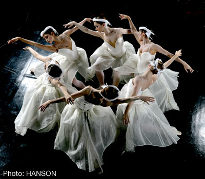 The Swans Dance - Photo: HANSON